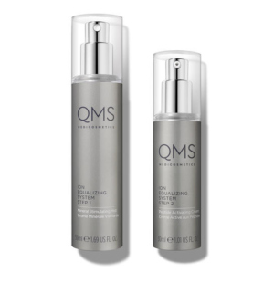 QMS Advanced Ion Equalizing System